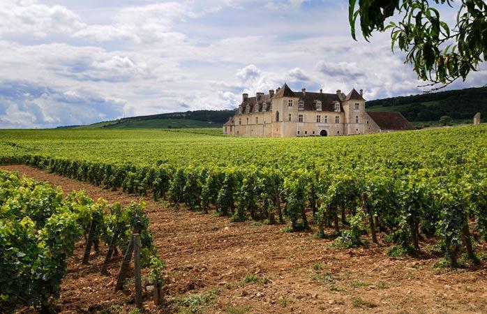 Loyda Ranskan Viinialueet Ja Niiden Erikoisuudet Momomdo Discover