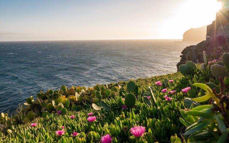 Mahtava Madeiran loma: koe Madeiran nähtävyydet, vaellusreitit ja paljon muuta